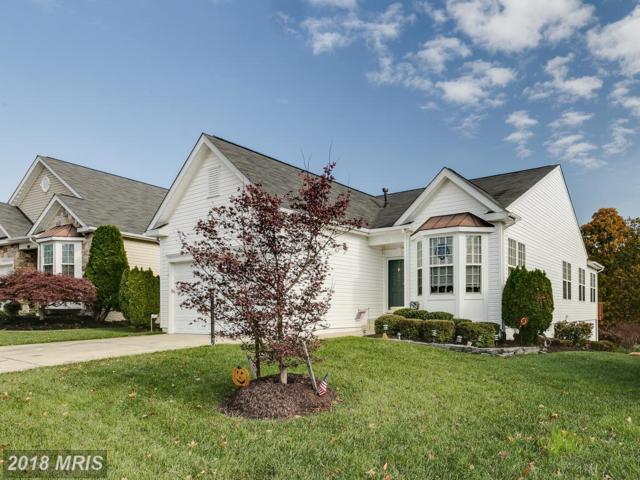 17301 Four Seasons Drive, Dumfries, VA 22025 (#PW10103470) :: Pearson Smith Realty