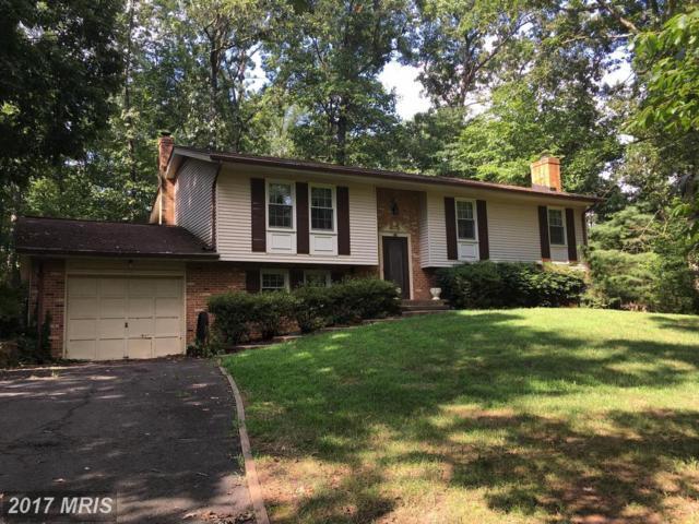 14870 Owls Nest Road, Nokesville, VA 20181 (#PW10107806) :: Wicker Homes Group