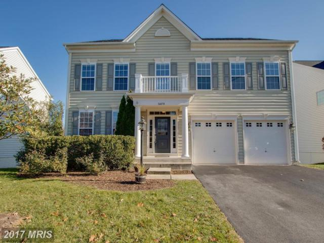 16070 Green Bay Street, Haymarket, VA 20169 (#PW10113952) :: Network Realty Group