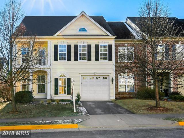 9116 Panther Falls Way, Bristow, VA 20136 (#PW10138805) :: The Hagarty Real Estate Team