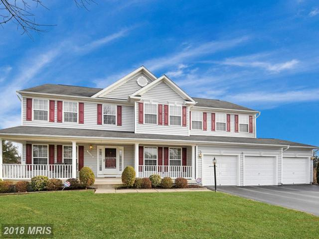 12149 Jennell Drive, Bristow, VA 20136 (#PW10153455) :: Network Realty Group