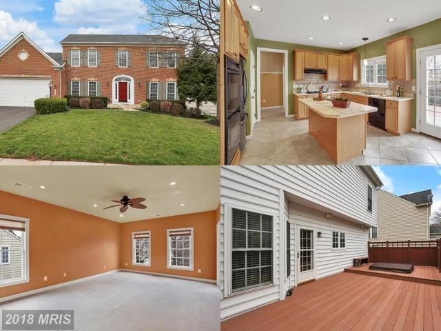 7224 Winnipeg Court, Gainesville, VA 20155 (#PW10216536) :: Pearson Smith Realty