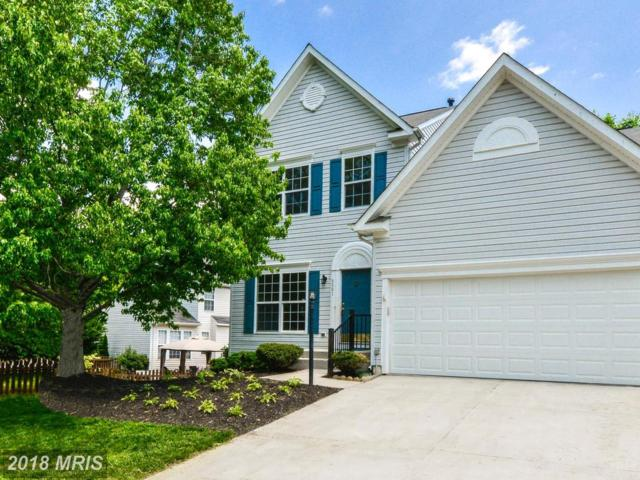 5591 Hobsons Choice Loop, Manassas, VA 20112 (#PW10224165) :: Green Tree Realty