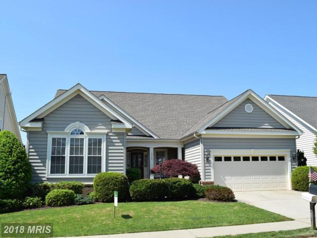 13745 Charismatic Way, Gainesville, VA 20155 (#PW10240204) :: Advance Realty Bel Air, Inc