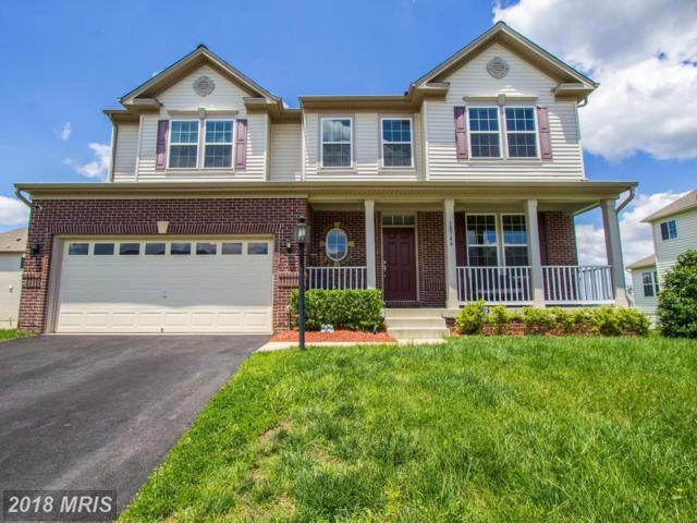 18746 Pier Trail Drive, Triangle, VA 22172 (MLS #PW10245840) :: Explore Realty Group
