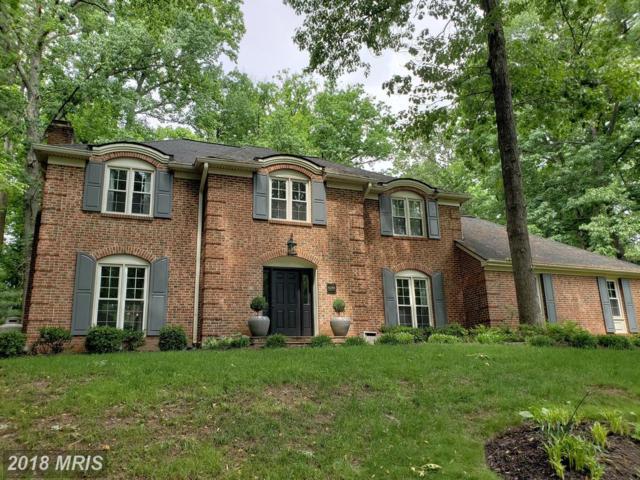 4344 Banbury Drive, Gainesville, VA 20155 (#PW10248822) :: Colgan Real Estate