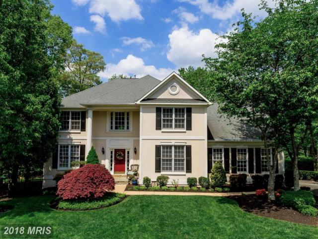8058 Horse Shoe Bay Court, Gainesville, VA 20155 (#PW10250327) :: The Gus Anthony Team