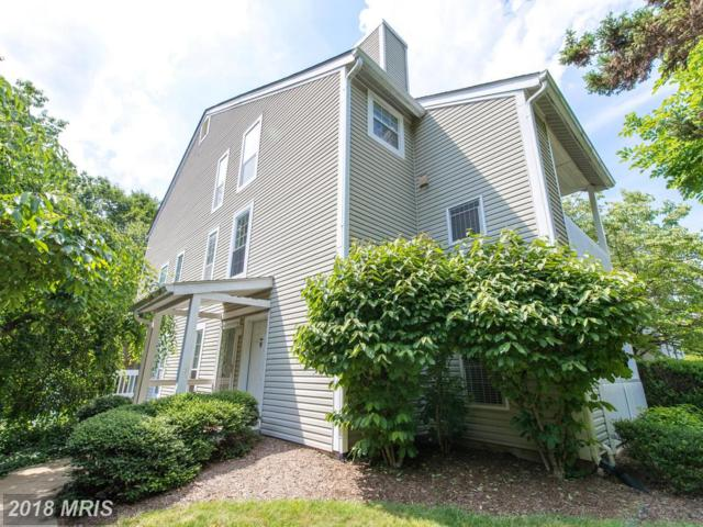 12110 Cardamom Drive #12110, Woodbridge, VA 22192 (#PW10260797) :: Charis Realty Group