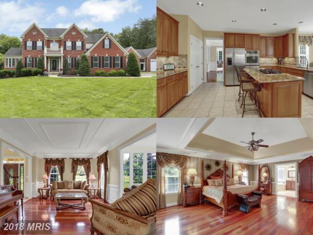 10401 Mount Vernon Drive, Manassas, VA 20111 (#PW10269177) :: RE/MAX Executives
