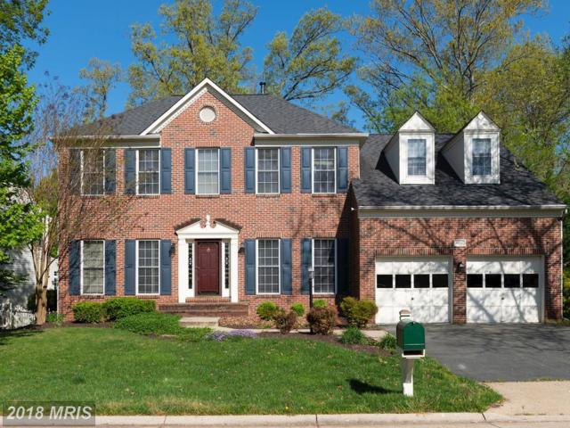 8150 Cancun Court, Gainesville, VA 20155 (MLS #PW10276903) :: Explore Realty Group