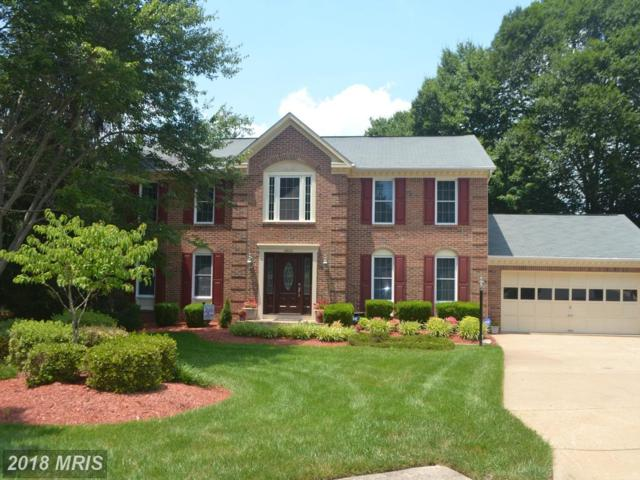 16600 Accolon Court, Dumfries, VA 22025 (#PW10290590) :: Bob Lucido Team of Keller Williams Integrity