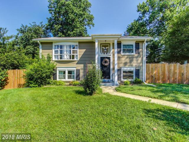 3306 Beaumont Road, Woodbridge, VA 22193 (#PW10295084) :: RE/MAX Executives