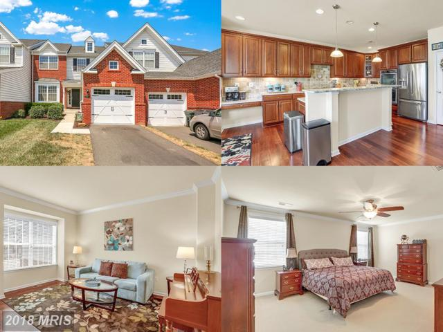 15446 Painters Cove Way, Haymarket, VA 20169 (MLS #PW10297067) :: Explore Realty Group