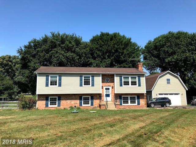 2614 Alvey Drive, Haymarket, VA 20169 (#PW10297464) :: Jacobs & Co. Real Estate