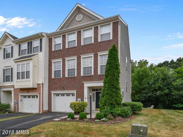 14223 Legend Glen Court, Gainesville, VA 20155 (#PW10303226) :: Colgan Real Estate