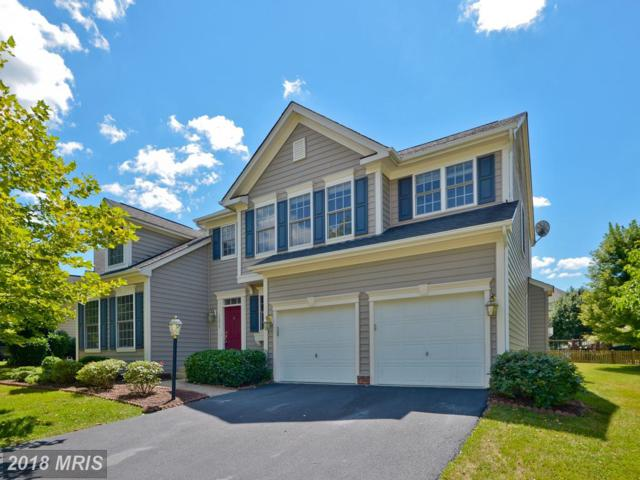 14013 Albert Way, Gainesville, VA 20155 (#PW10303322) :: Samantha Bendigo