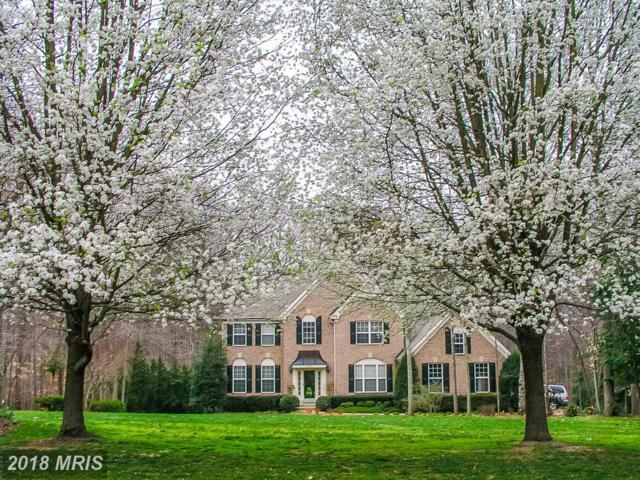 12084 Lancers Court, Manassas, VA 20112 (MLS #PW10304451) :: Explore Realty Group