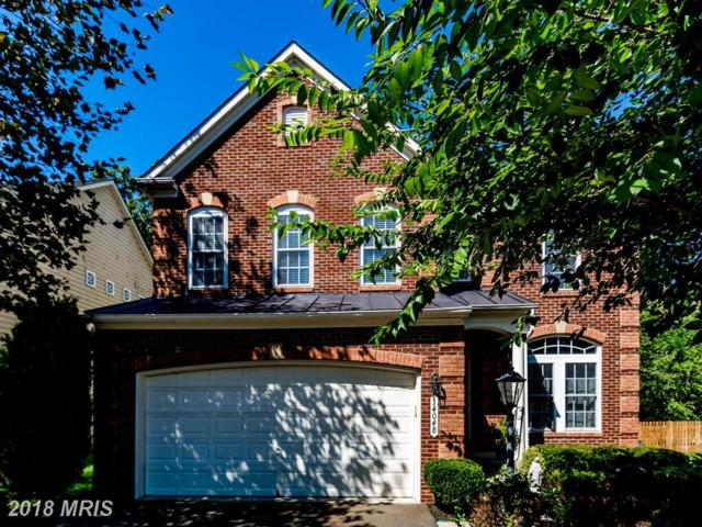 14048 Albert Way, Gainesville, VA 20155 (#PW10329724) :: Samantha Bendigo