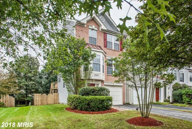 12051 Country Mill Drive, Bristow, VA 20136 (#PW10350628) :: RE/MAX Gateway