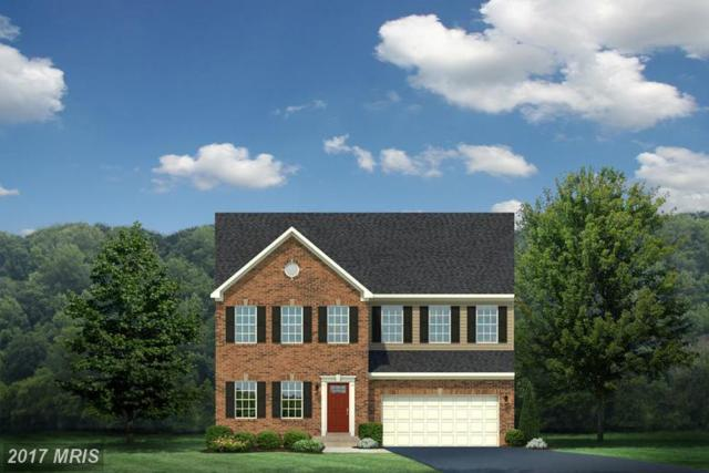 5 Hoadly Manor Drive, Manassas, VA 20112 (#PW9849764) :: LoCoMusings