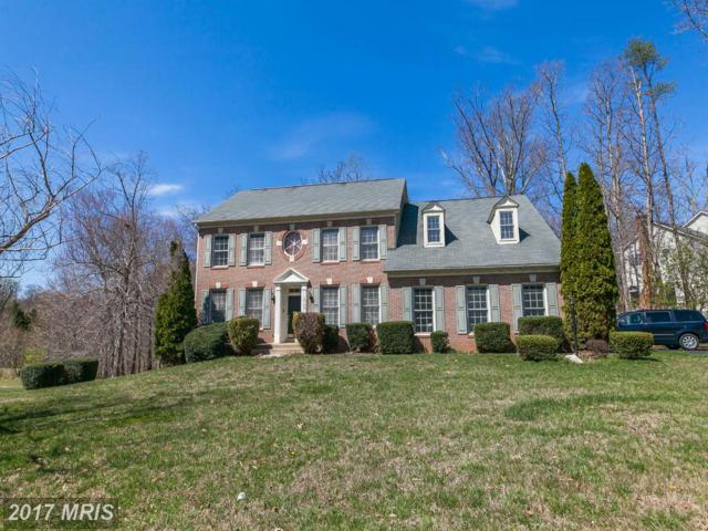13100 Brookmead Drive, Manassas, VA 20112 (#PW9904125) :: The Nemerow Team