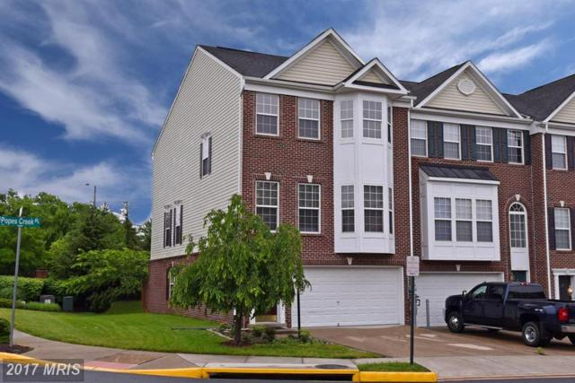 6115 Popes Creek Place, Haymarket, VA 20169 (#PW9938271) :: LoCoMusings