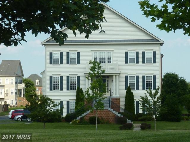 11674 Iron Brigade Ave, Bristow, VA 20136 (#PW9939870) :: Pearson Smith Realty
