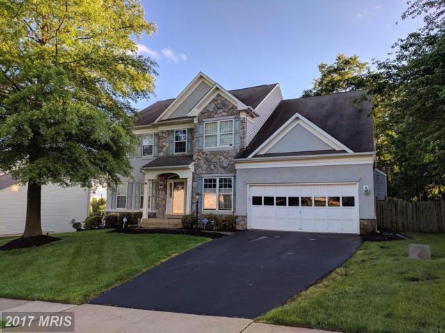 10320 Winged Elm Circle, Manassas, VA 20110 (#PW9948534) :: Pearson Smith Realty