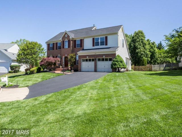 6950 Jockey Club Lane, Haymarket, VA 20169 (#PW9949188) :: LoCoMusings