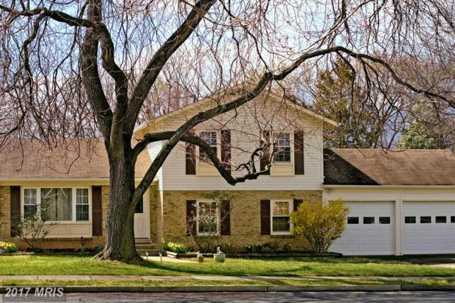 8250 Highland Street, Manassas, VA 20110 (#PW9952233) :: LoCoMusings