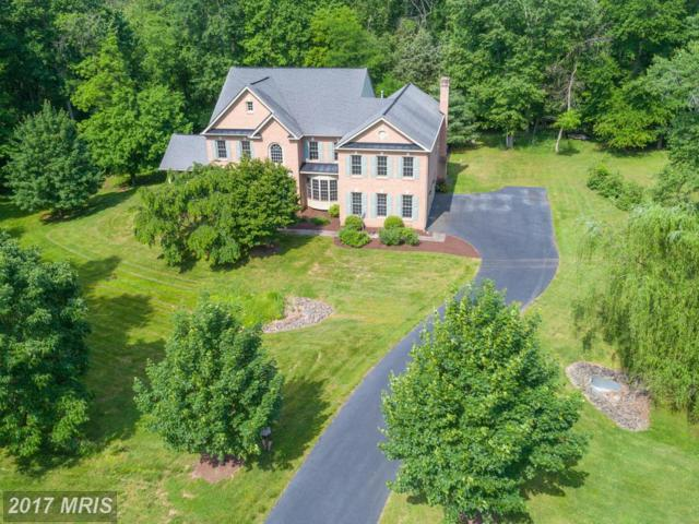 15280 Riding Club Drive, Haymarket, VA 20169 (#PW9952454) :: LoCoMusings