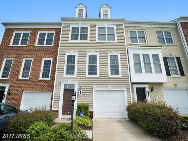 14612 Robin Glen Way #529, Woodbridge, VA 22191 (#PW9954923) :: LoCoMusings