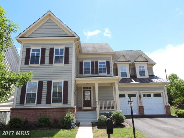 10860 Catletts Station Court, Bristow, VA 20136 (#PW9959543) :: Pearson Smith Realty