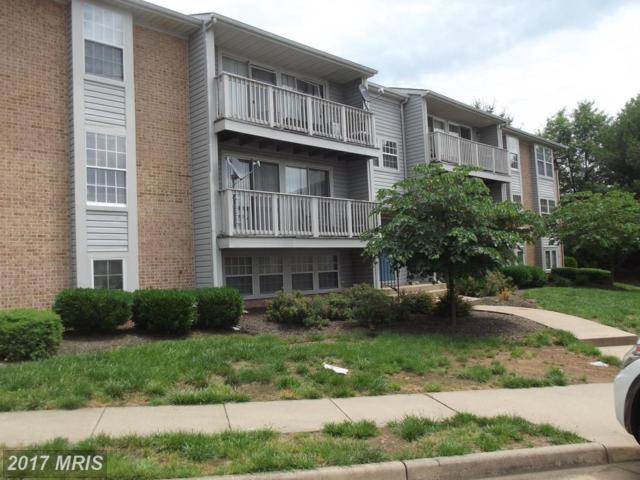 3351 Yost Lane #203, Dumfries, VA 22026 (#PW9962803) :: Pearson Smith Realty