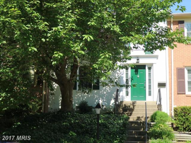13114 Rock Ridge Lane, Woodbridge, VA 22191 (#PW9973237) :: LoCoMusings