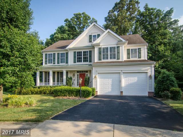 10654 Heron Ridge Court, Manassas, VA 20112 (#PW9979141) :: LoCoMusings