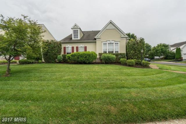 12930 Dunbarton Drive, Bristow, VA 20136 (#PW9983371) :: Network Realty Group