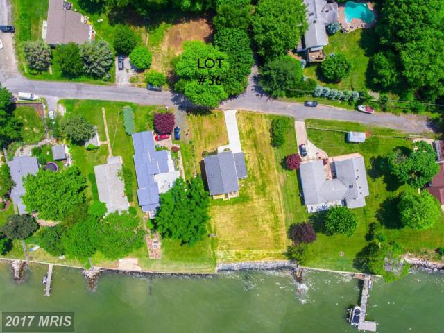 LOT #36 Chesapeake Avenue, Stevensville, MD 21666 (#QA10000847) :: Pearson Smith Realty