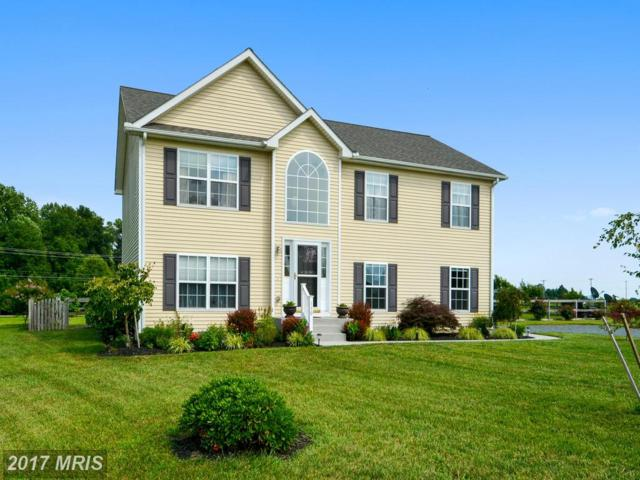 130 Condor Court, Church Hill, MD 21623 (#QA10004157) :: Pearson Smith Realty