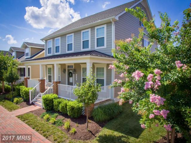 178 Evelyne Street, Chester, MD 21619 (#QA10015720) :: Pearson Smith Realty