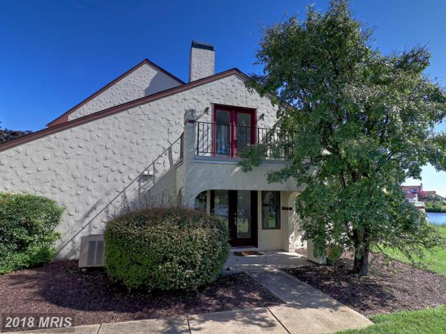 28-K Queen Mary Court, Chester, MD 21619 (#QA10019772) :: Pearson Smith Realty