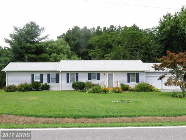 1552 Love Point Road, Stevensville, MD 21666 (#QA10035137) :: Pearson Smith Realty