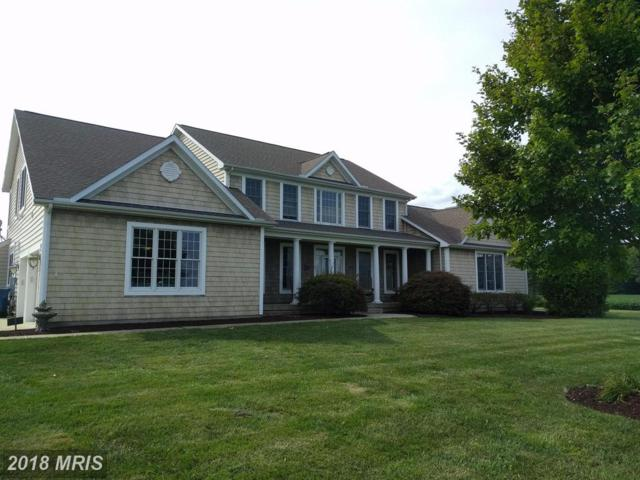 126 Tanyard Road, Centreville, MD 21617 (#QA10043443) :: Pearson Smith Realty