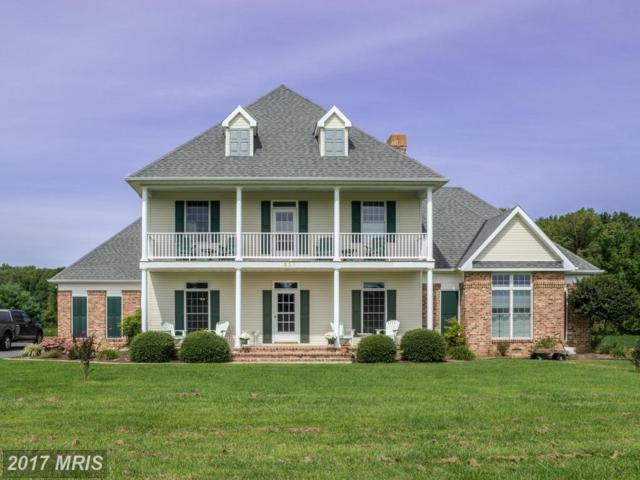 531 White Marsh Road, Centreville, MD 21617 (#QA10044929) :: Pearson Smith Realty