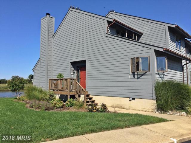 1201 Marion Quimby Drive, Stevensville, MD 21666 (#QA10050451) :: Dart Homes
