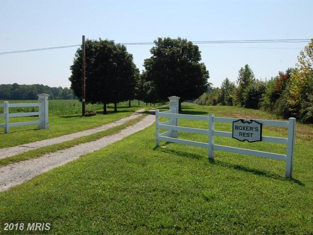 5901 Church Hill Road, Church Hill, MD 21623 (#QA10074174) :: Pearson Smith Realty