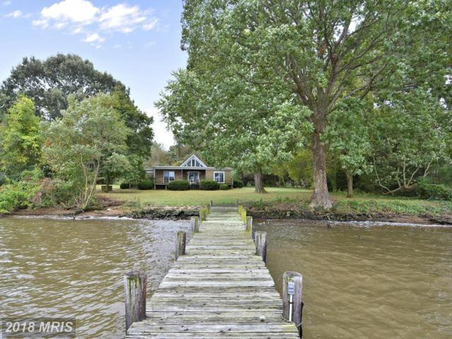 209 Rivershore Road, Chestertown, MD 21620 (#QA10078797) :: Pearson Smith Realty