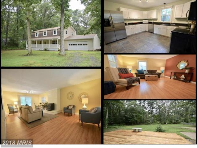 116 Margaret Drive, Stevensville, MD 21666 (#QA10104840) :: The Gus Anthony Team