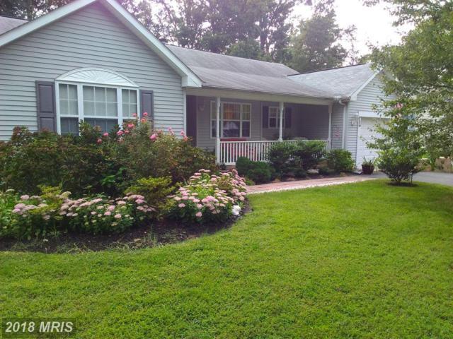 227 Larch Place, Stevensville, MD 21666 (#QA10118509) :: SURE Sales Group