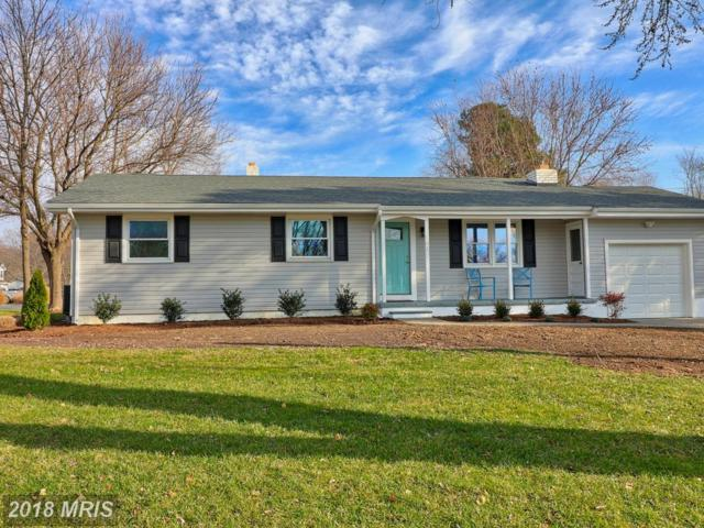 101 Birch Road, Stevensville, MD 21666 (#QA10119224) :: Pearson Smith Realty